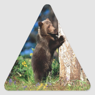 Little Brown Bear Triangle Sticker