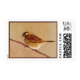Little brown bird postage