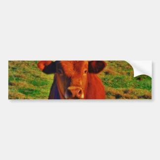 Little Brown Cow Bright Green Grass Bumper Sticker