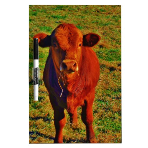 Little Brown Cow Bright Green Grass Dry-Erase Boards