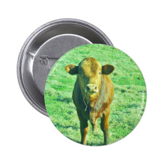 Little Brown Cow in Pastel Green Grass Pinback Button