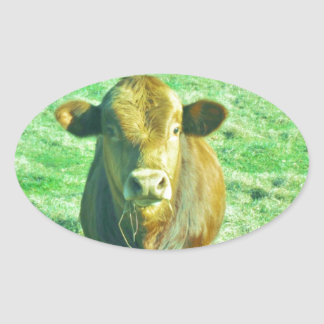 Little Brown Cow in Pastel Green Grass Stickers