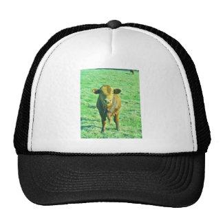 Little Brown Cow in Pastel Green Grass Trucker Hat