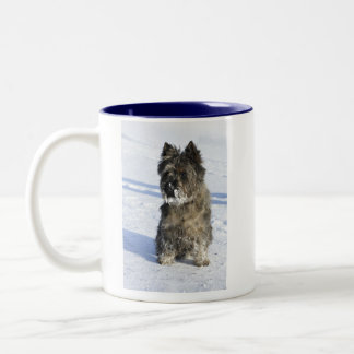 Little brown dog sit in the snow with lot of snow Two-Tone coffee mug