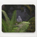 Little Budda Mouse Mats