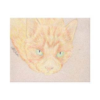 Little Buddy Cute Tabby Cat Canvas Wrap Canvas Print