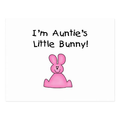 Little Bunny T-shirts y regalos de tía rosada Postales