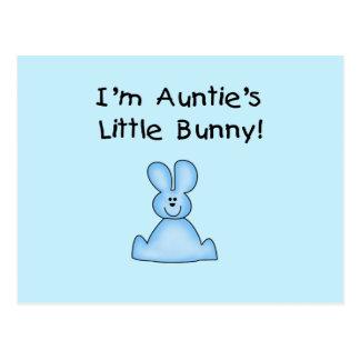 Little Bunny Tshirts y regalos de tía azul Tarjetas Postales