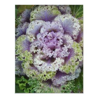 Little Cabbage Head Card