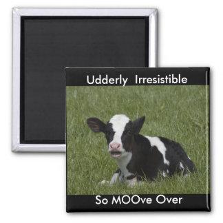 Little Calf Magnet