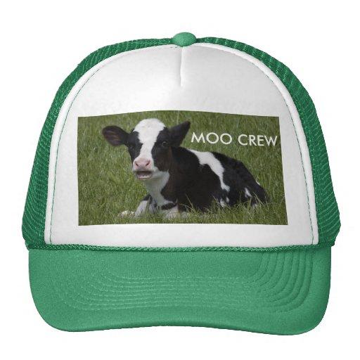 Little Calf Trucker Hats