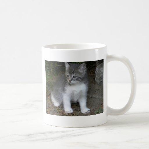 little cat Bondu Mugs