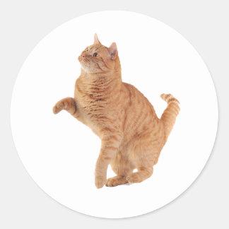 Little Cat Classic Round Sticker