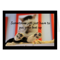 Little Cat Feet Get Well Wishes Card