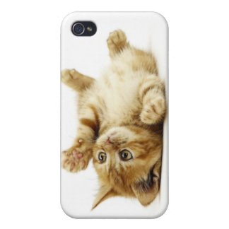 LITTLE CAT iPhone 4 COVER