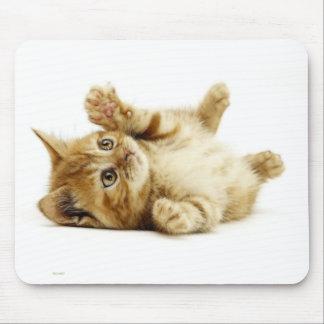 LITTLE CAT MOUSE PAD