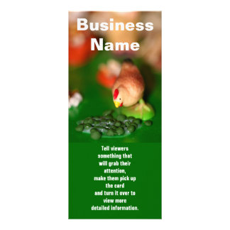 Little Chicken, Business Name, Tell viewers som... Rack Card