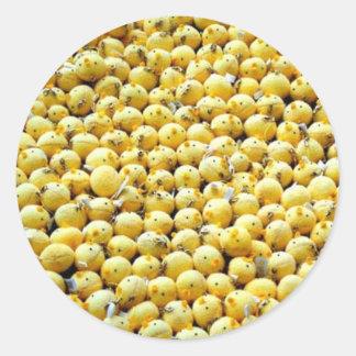 little Chicken dolls Classic Round Sticker