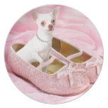 Little chihuahua in pink girly shoes with glitter dinner plate