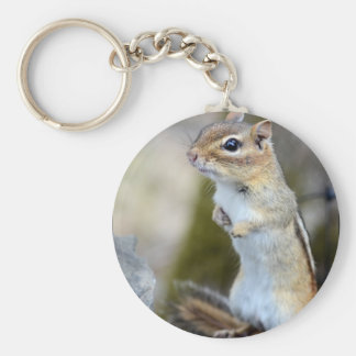 Little Chipmunk on Alert Keychain