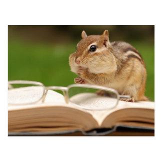 Little Chipmunk Reading Postcard