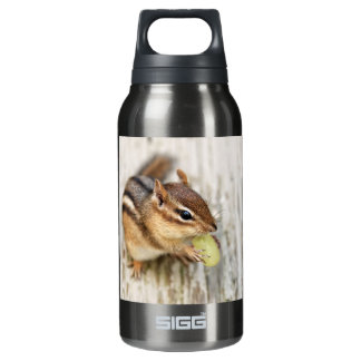 Little Chipmunk with Grape Insulated Water Bottle