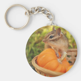 Little Chipmunk with Pumpkin Basic Round Button Keychain