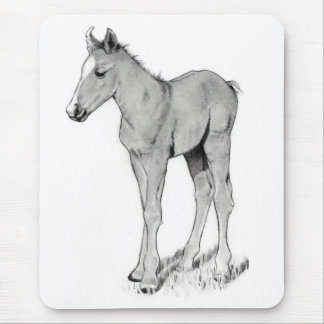 LITTLE COLT IN PENCIL MOUSE PAD