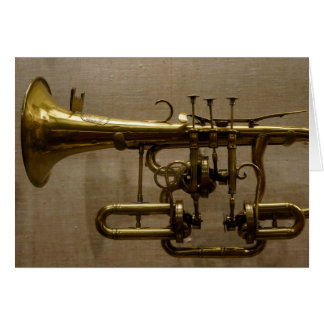 Little Coronet, Photography by Brad Hines Card