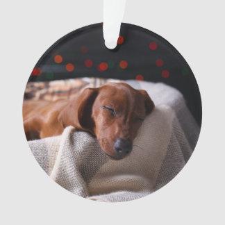 Little Cute Dachshund Puppy On Christmas Ornament