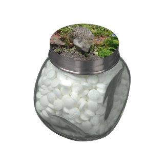 little cute visit in the garden glass jar