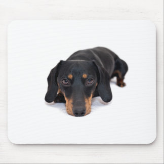 Little Dachshund Mouse Pad