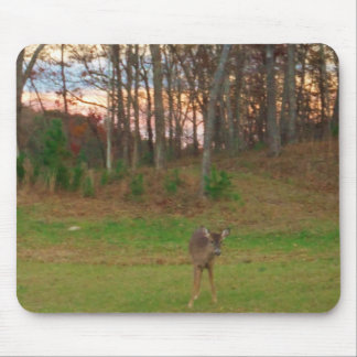 Little Deer &a Pink Sunset Mouse Pad