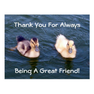 Little Ducklings Postcard