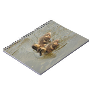 little ducklings spiral note books