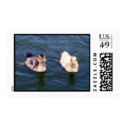 Little Ducklings Stamp