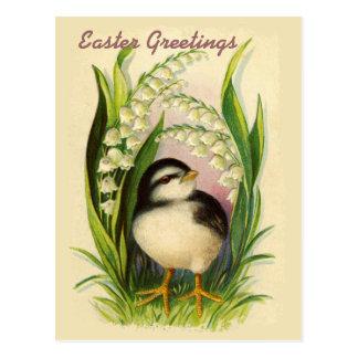 Little Easter Bird Vintage Postcard