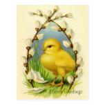 Little Easter Chick Vintage Postcard