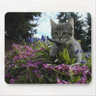 Little Explorer Mouse Pad
