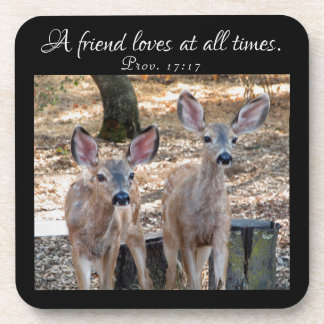 Little Fawn Pals Proverbs Coasters