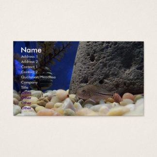 Little Fish Business Card