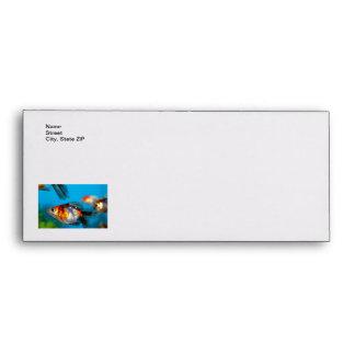 Little Fish Envelope