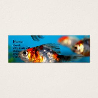 Little Fish Mini Business Card