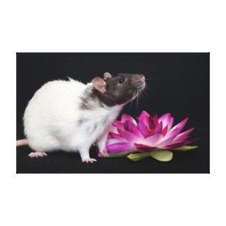 Little Flower -Rat print