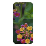 Little Flowers iPhone 5 Case Savvy Glossy Finish C