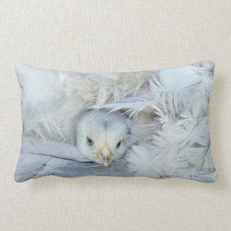 little fluffy chick lumbar pillow