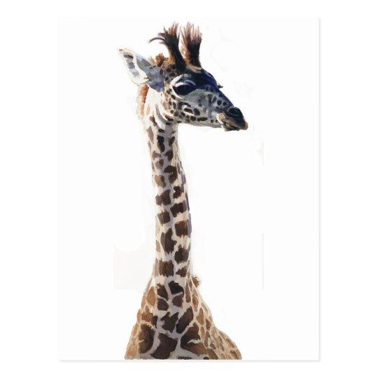 """Little Giraffe"" Wildlife Animal Watercolor Postcard"