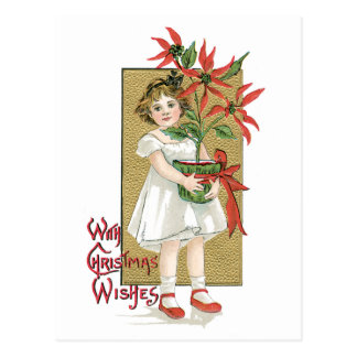 Little Girl Holding Poinsettia Vintage Christmas Postcard