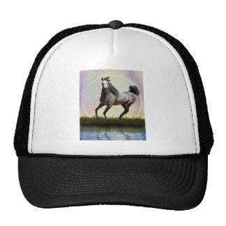 Little girls dream trucker hat
