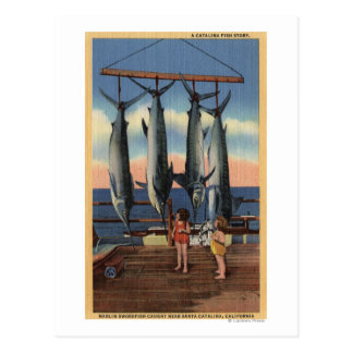 Little Girls Looking at Caught Swordfish Post Card